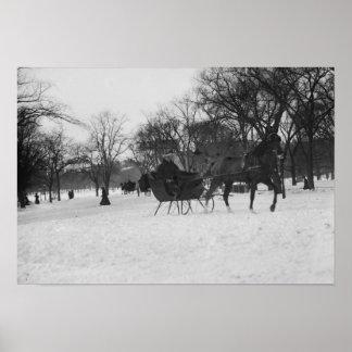 Trineo traído por caballo en Central Park, New Póster