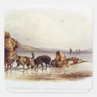 Trineos de perro de los indios de Mandan Calcomanía Cuadradas Personalizadas