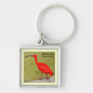 Trinidad and Tobago Red Scarlet Ibis Keychain