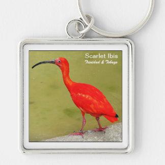 Trinidad and Tobago Red Scarlet Ibis Keychain