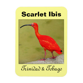 Trinidad and Tobago Red Scarlet Ibis Rectangular Photo Magnet