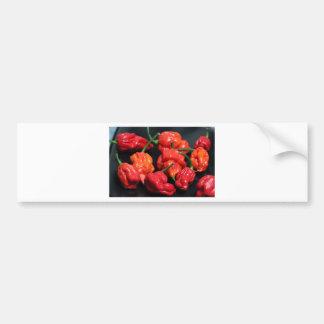 Trinidad Scorpion Hottest Chilli Bumper Sticker