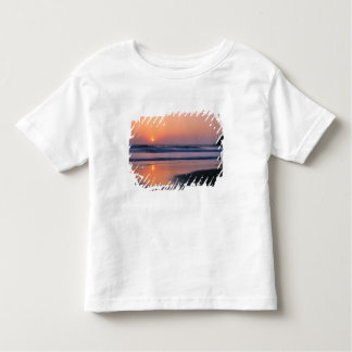 Trinidad State Beach, California. USA. Sea 2 Toddler T-shirt