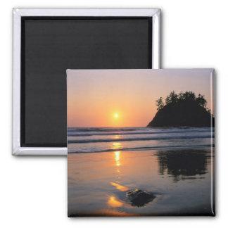 Trinidad State Beach, California. USA. Sea Magnet