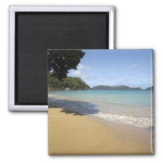 - Trinidad y Tobago - playa del Caribe a lo largo  Imanes De Nevera