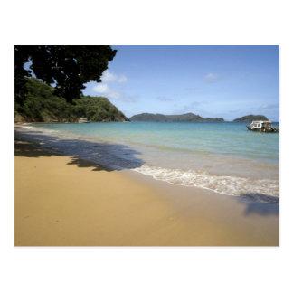 - Trinidad y Tobago - playa del Caribe a lo largo Tarjeta Postal