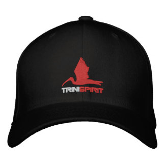 TRINISPIRIT® Flexifit Embroidered Cap Embroidered Baseball Caps