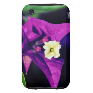 Trinitaria after dark iPhone 3 tough cover