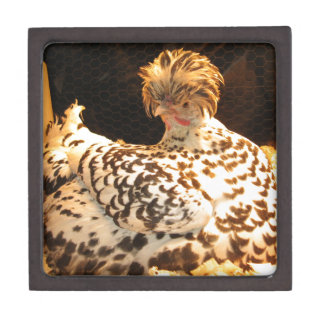 Trinket box with German Spitzhauben hen