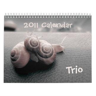 TRIO 2011 calendar