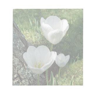 Trío blanco de la flor de los tulipanes blocs de notas