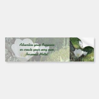 Trío blanco de la flor de los tulipanes pegatina de parachoque