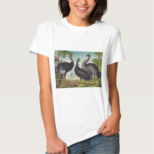 Trío de avestruces t shirts