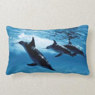 Trío de delfínes cojín