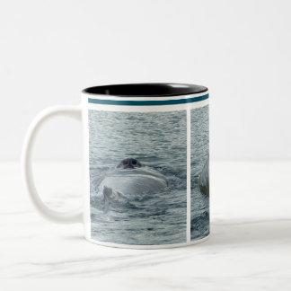Trío de las imágenes de la foto de la ballena del taza de dos tonos