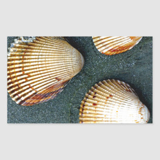 Trío de Shell Pegatinas