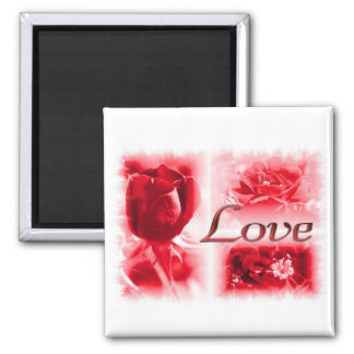 Trío del amor del rosa rojo imán cuadrado