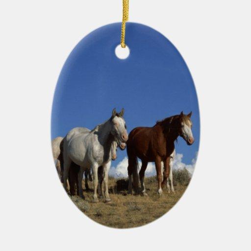 Trío del caballo adorno navideño ovalado de cerámica