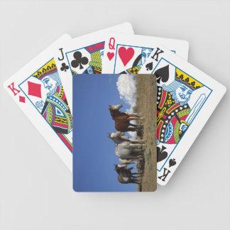 Trío del caballo baraja de cartas