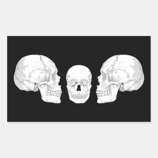 Trío del cráneo rectangular pegatina