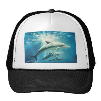 Trío del delfín gorra