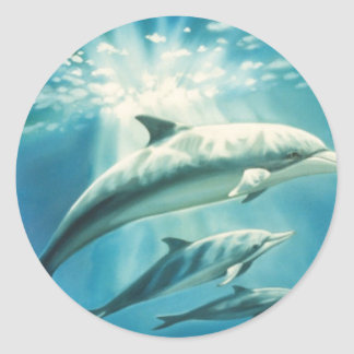 Trío del delfín pegatina redonda
