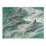 Trío del delfín - postal