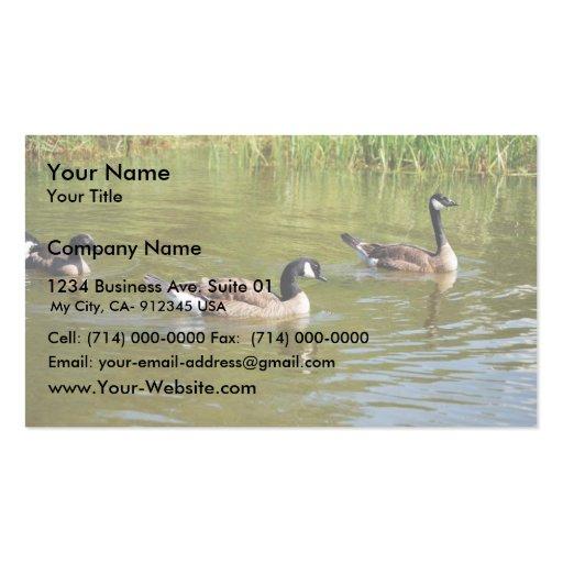 Trío del ganso de Canadá en el lago goose, Anchora Plantilla De Tarjeta De Visita
