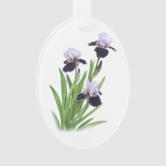 Trío del iris