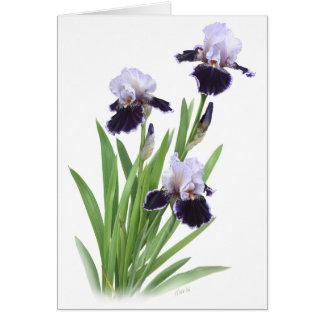 Trío del iris tarjetas