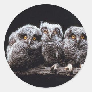 Trío del Owlet Pegatina Redonda