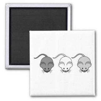 Trío del ratón imán cuadrado