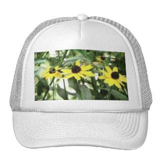 Trio Of Black Eyed Susans Trucker Hat