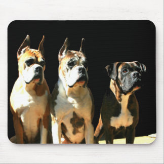 Trio of boxers mousepad