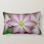 Trio of Clematis Pink and White Spring Flowers Lumbar Pillow