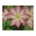 Trio of Clematis Pink and White Spring Flowers Wood Wall Decor