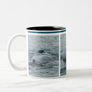 Trio of Diving Whale Photo Images Two-Tone Coffee Mug