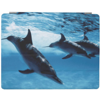 Trio of Dolphins iPad Smart Cover
