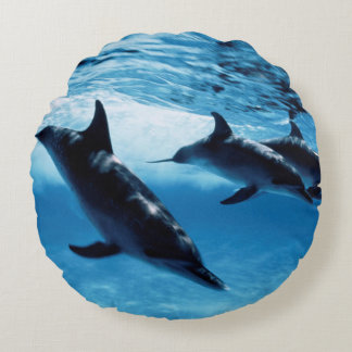 Trio of Dolphins Round Pillow