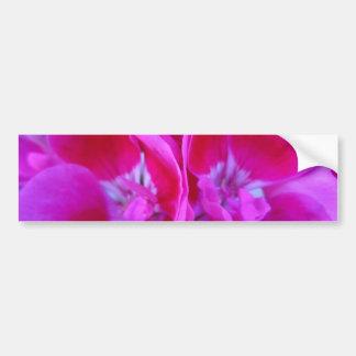 Trio of Hot Pink Geraniums Bumper Sticker