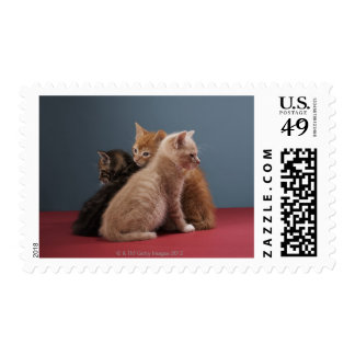 Trio of kittens postage