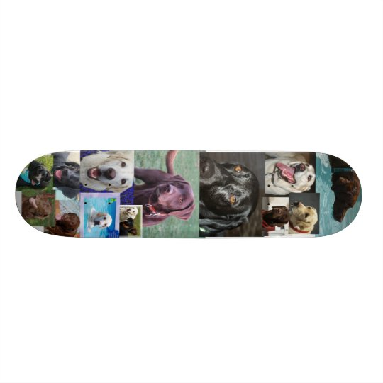 Trio of Labradors Skateboard