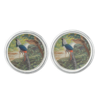 Trio of Lady Amherst's pheasant by waterfall Cufflinks