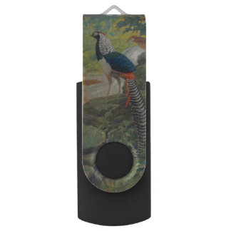 Trio of Lady Amherst's pheasant by waterfall Flash Drive