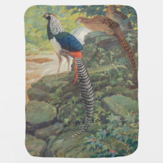 Trio of Lady Amherst's pheasant by waterfall Swaddle Blanket