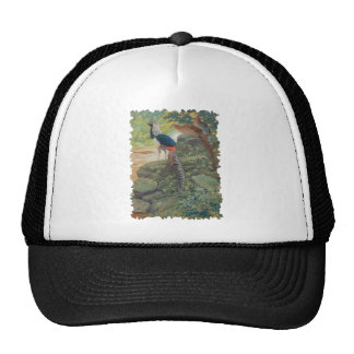 Trio of Lady Amherst's pheasant by waterfall Trucker Hat