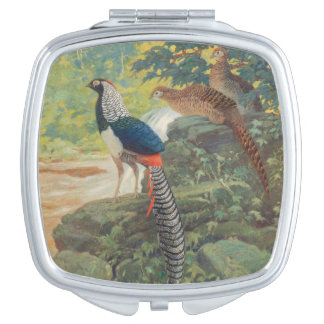 Trio of Lady Amherst's pheasant by waterfall Vanity Mirror
