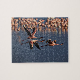 Trio of Lesser Flamingos in flight, Lake Nakuru Jigsaw Puzzle