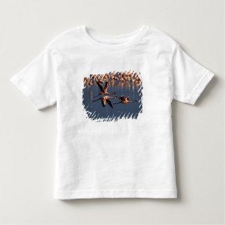 Trio of Lesser Flamingos in flight, Lake Nakuru Toddler T-shirt