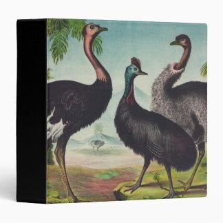 Trio of Ostriches Binder